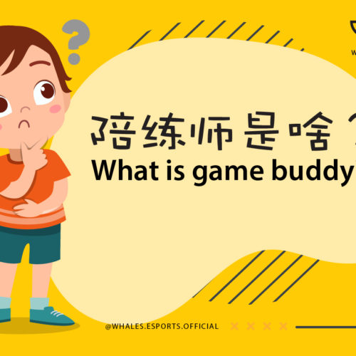 What is game buddy?